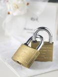 Managable locks