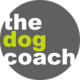 Dog Walker in Paddington