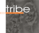 Tribe Architecture Pty Ltd