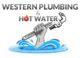 Plumber in Largs Bay