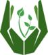 V Nurture Green