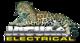 Jaguar Electricals