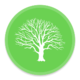 High Point Tree Management   Tree Lopping And Removal Service